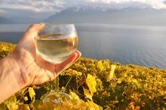 Wineglass στο χέρι ενάντια στους αμπελώνες Lavaux στην περιοχή, Switze Στοκ φωτογραφία με δικαίωμα ελεύθερης χρήσης