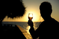 wineglass Arkivfoto