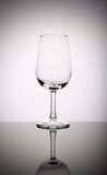 Wineglass. One wineglass isolated on white background Stock Photos