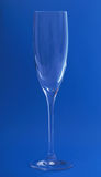 Wineglass. Stock Image