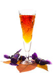 wineglass Imagem de Stock