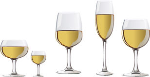 Wineglass. A glass of white wine Stock Images