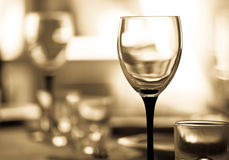 Wineglass. Against blurry background. Shallow DOF. Sepia tone Royalty Free Stock Images