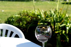 Wineglass Στοκ Φωτογραφίες