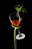 Wineglass in bamboo; Royalty Free Stock Photo