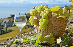 Wineglass and basket of grapes Royalty Free Stock Photography