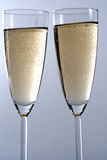 Wineglass of champagne isolated in white backgroun Stock Photos