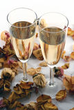 Wineglass of champagne isolated in white backgroun Stock Images