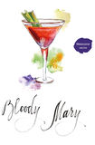 Wineglass of cocktail Bloody Mary with celery. Wineglass of cocktail Bloody Mary with green celery, hand drawn - watercolor vector Illustration royalty free illustration