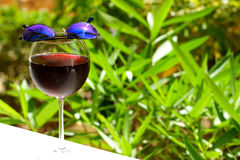 Wineglass with cold sangria Stock Photo