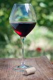 Wineglass with cork Royalty Free Stock Photography