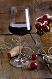 wineglass dla kosztować z winogronami Obraz Stock
