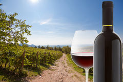 Wineglass e frasco do vinho vermelho Fotografia de Stock Royalty Free