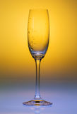 Wineglass glass water Royalty Free Stock Photography