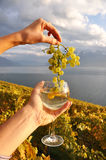 Wineglass in the hand Royalty Free Stock Photos
