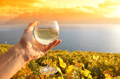 Wineglass in the hand Stock Photo