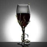 Wineglass with ivy Royalty Free Stock Images