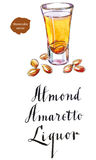Wineglass migdałowy trunku amaretto ilustracja wektor