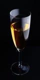 Wineglass na czerń zdjęcie royalty free