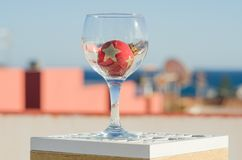 Wineglass with decoration ball. Wineglass with red decoration ball & x28;outdoor& x29 Royalty Free Stock Photos