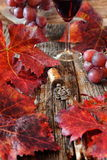 Wineglass, red grape leaves and vintage bottle stopper Royalty Free Stock Photos
