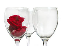 Wineglass with rose Royalty Free Stock Photo