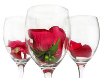 Wineglass with rose flower Royalty Free Stock Photos