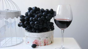 A wineglass with vine and grapes stock video