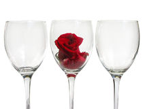 Wineglass With Rose Flower Stock Photography