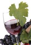 Wineglasse Imagens de Stock Royalty Free