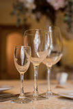 wineglasses Imagens de Stock Royalty Free