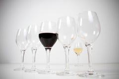 Wineglasses isolados no estúdio Fotos de Stock Royalty Free