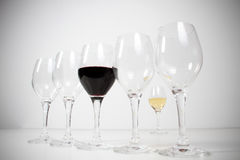 Wineglasses isolated in studio royalty free stock photos
