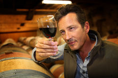 Winegrower checking on new wine production in cellar. Winegrower in wine-cellar holding glass of wine Stock Photo