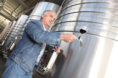 Winegrower with glass of wine Stock Image