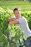 Winegrower standing in vineyard Royalty Free Stock Photos