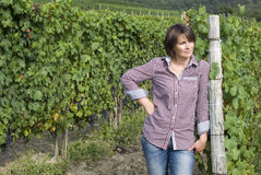 Winegrower in the vineyard Stock Photos