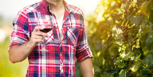 Winegrower with wine glass. In the vineyard Royalty Free Stock Photography