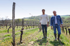 Winegrowers. Wine enthusiasts visiting local vineyard Royalty Free Stock Image
