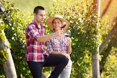 Winegrowers som kontrollerar färg av vin royaltyfria foton