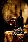 Winekällare Fotografering för Bildbyråer