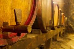 Winekällare Royaltyfri Bild