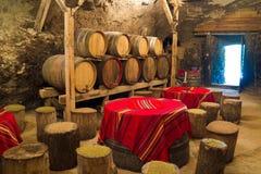 Winekällare Royaltyfria Bilder
