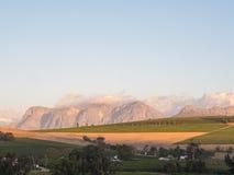 Winelands Stock Image