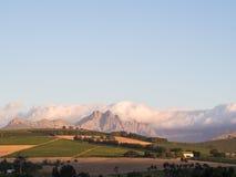 Winelands Stock Photos