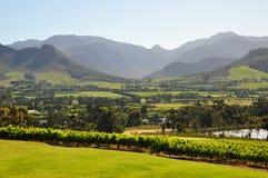 Winelands Suráfrica de Franshoek. Imagen de archivo libre de regalías