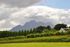 winelandsuddTown South Africa Fotografering för Bildbyråer