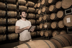 Winemaker подсчитывая бочонки с таблеткой в большом хранении Стоковое фото RF