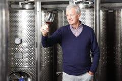 Winemaker aposentado Active foto de stock royalty free