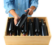 Winemaker with case of wine. Winemaker standing behind a case of red wine holding one bottle in his hands over the open box. Square format over a white royalty free stock images